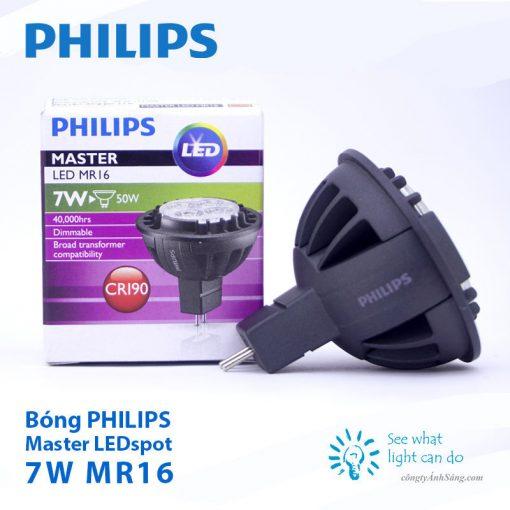 Bong PHILIPS Master LED spot 7W MR16 12V