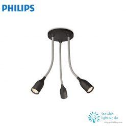 Đèn roi PHILIPS 55543